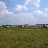 Avioane in paragina