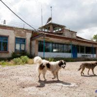 Low-cost din Moldova