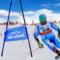 Abonament de schi Bukovel 2021 – 2022